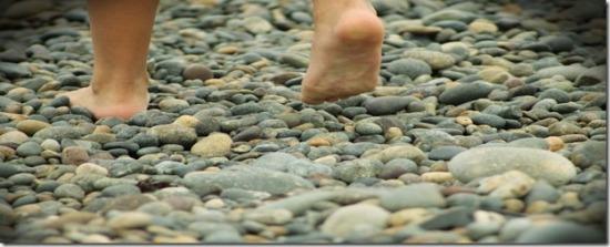 las-piedras-del-camino-1_thumb